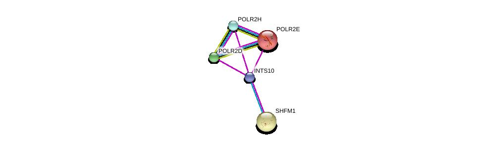 http://string-db.org/version_10/api/image/networkList?limit=0&targetmode=proteins&caller_identity=gene_cards&network_flavor=evidence&identifiers=9606.ENSP00000381064%0d%0a9606.ENSP00000215587%0d%0a9606.ENSP00000248566%0d%0a9606.ENSP00000248566%0d%0a9606.ENSP00000272645%0d%0a9606.ENSP00000296223%0d%0a