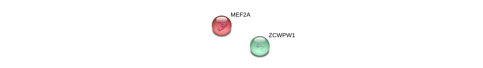 http://string-db.org/version_10/api/image/networkList?limit=0&targetmode=proteins&caller_identity=gene_cards&network_flavor=evidence&identifiers=9606.ENSP00000381109%0d%0a9606.ENSP00000346389%0d%0a