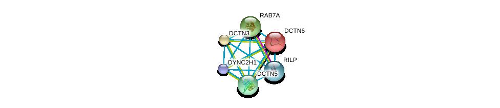 http://string-db.org/version_10/api/image/networkList?limit=0&targetmode=proteins&caller_identity=gene_cards&network_flavor=evidence&identifiers=9606.ENSP00000381167%0d%0a9606.ENSP00000259632%0d%0a9606.ENSP00000265062%0d%0a9606.ENSP00000221114%0d%0a9606.ENSP00000300087%0d%0a9606.ENSP00000301336%0d%0a