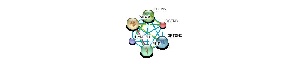 http://string-db.org/version_10/api/image/networkList?limit=0&targetmode=proteins&caller_identity=gene_cards&network_flavor=evidence&identifiers=9606.ENSP00000381167%0d%0a9606.ENSP00000259632%0d%0a9606.ENSP00000265062%0d%0a9606.ENSP00000300087%0d%0a9606.ENSP00000301336%0d%0a9606.ENSP00000311489%0d%0a