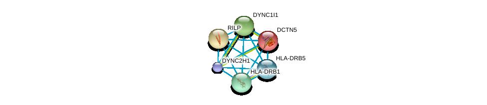 http://string-db.org/version_10/api/image/networkList?limit=0&targetmode=proteins&caller_identity=gene_cards&network_flavor=evidence&identifiers=9606.ENSP00000381167%0d%0a9606.ENSP00000353099%0d%0a9606.ENSP00000301336%0d%0a9606.ENSP00000320130%0d%0a9606.ENSP00000300087%0d%0a9606.ENSP00000364114%0d%0a