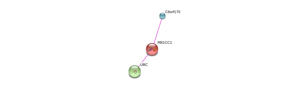 http://string-db.org/version_10/api/image/networkList?limit=0&targetmode=proteins&caller_identity=gene_cards&network_flavor=evidence&identifiers=9606.ENSP00000381270%0d%0a9606.ENSP00000025008%0d%0a9606.ENSP00000344818%0d%0a