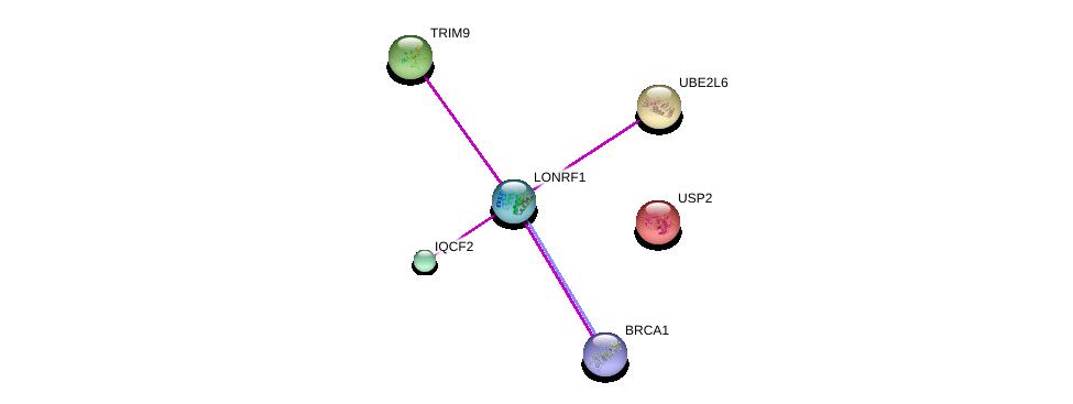 http://string-db.org/version_10/api/image/networkList?limit=0&targetmode=proteins&caller_identity=gene_cards&network_flavor=evidence&identifiers=9606.ENSP00000381298%0d%0a9606.ENSP00000329904%0d%0a9606.ENSP00000298355%0d%0a9606.ENSP00000418960%0d%0a9606.ENSP00000287156%0d%0a9606.ENSP00000260187%0d%0a