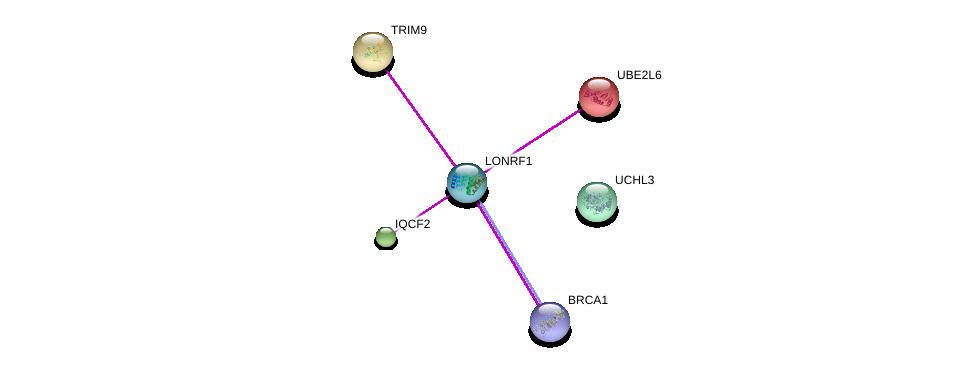http://string-db.org/version_10/api/image/networkList?limit=0&targetmode=proteins&caller_identity=gene_cards&network_flavor=evidence&identifiers=9606.ENSP00000381298%0d%0a9606.ENSP00000329904%0d%0a9606.ENSP00000418960%0d%0a9606.ENSP00000298355%0d%0a9606.ENSP00000287156%0d%0a9606.ENSP00000366819%0d%0a