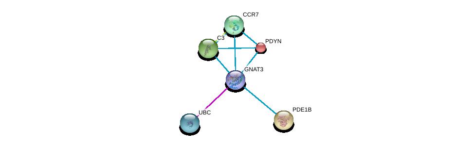 http://string-db.org/version_10/api/image/networkList?limit=0&targetmode=proteins&caller_identity=gene_cards&network_flavor=evidence&identifiers=9606.ENSP00000381339%0d%0a9606.ENSP00000344818%0d%0a9606.ENSP00000217305%0d%0a9606.ENSP00000243052%0d%0a9606.ENSP00000245907%0d%0a9606.ENSP00000246657%0d%0a