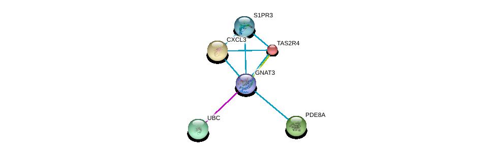 http://string-db.org/version_10/api/image/networkList?limit=0&targetmode=proteins&caller_identity=gene_cards&network_flavor=evidence&identifiers=9606.ENSP00000381339%0d%0a9606.ENSP00000344818%0d%0a9606.ENSP00000296026%0d%0a9606.ENSP00000247881%0d%0a9606.ENSP00000350878%0d%0a9606.ENSP00000311453%0d%0a
