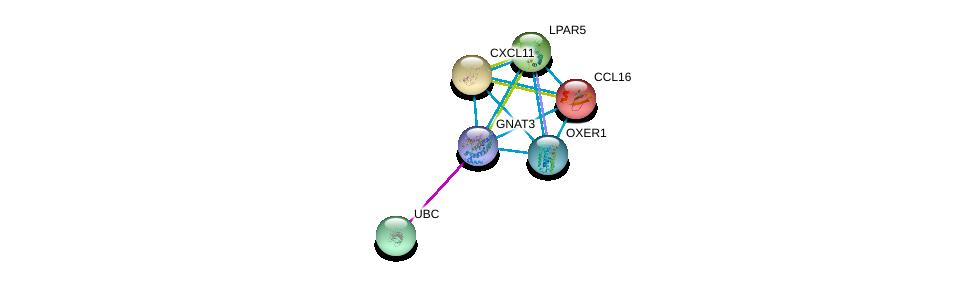 http://string-db.org/version_10/api/image/networkList?limit=0&targetmode=proteins&caller_identity=gene_cards&network_flavor=evidence&identifiers=9606.ENSP00000381339%0d%0a9606.ENSP00000344818%0d%0a9606.ENSP00000306884%0d%0a9606.ENSP00000293275%0d%0a9606.ENSP00000367930%0d%0a9606.ENSP00000327875%0d%0a