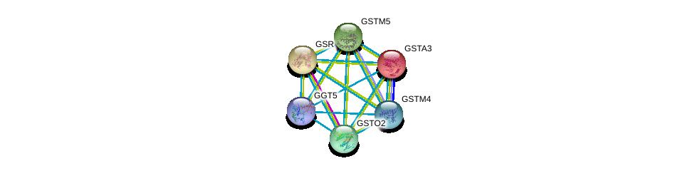 http://string-db.org/version_10/api/image/networkList?limit=0&targetmode=proteins&caller_identity=gene_cards&network_flavor=evidence&identifiers=9606.ENSP00000381340%0d%0a9606.ENSP00000345023%0d%0a9606.ENSP00000256593%0d%0a9606.ENSP00000211122%0d%0a9606.ENSP00000221130%0d%0a9606.ENSP00000358851%0d%0a