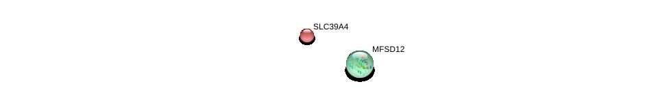 http://string-db.org/version_10/api/image/networkList?limit=0&targetmode=proteins&caller_identity=gene_cards&network_flavor=evidence&identifiers=9606.ENSP00000381566%0d%0a9606.ENSP00000301305%0d%0a