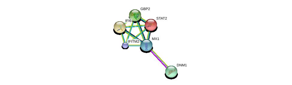 http://string-db.org/version_10/api/image/networkList?limit=0&targetmode=proteins&caller_identity=gene_cards&network_flavor=evidence&identifiers=9606.ENSP00000381599%0d%0a9606.ENSP00000362014%0d%0a9606.ENSP00000315768%0d%0a9606.ENSP00000359497%0d%0a9606.ENSP00000342513%0d%0a9606.ENSP00000382714%0d%0a