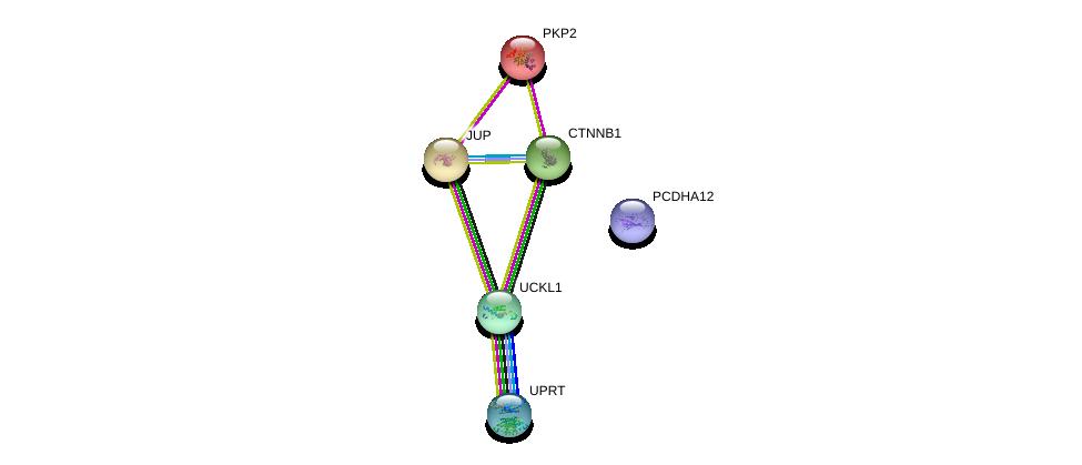 http://string-db.org/version_10/api/image/networkList?limit=0&targetmode=proteins&caller_identity=gene_cards&network_flavor=evidence&identifiers=9606.ENSP00000381628%0d%0a9606.ENSP00000344456%0d%0a9606.ENSP00000346155%0d%0a9606.ENSP00000362481%0d%0a9606.ENSP00000311113%0d%0a9606.ENSP00000070846%0d%0a