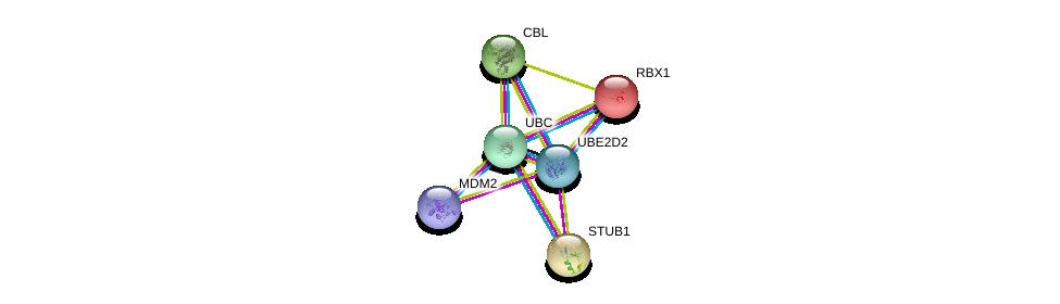 http://string-db.org/version_10/api/image/networkList?limit=0&targetmode=proteins&caller_identity=gene_cards&network_flavor=evidence&identifiers=9606.ENSP00000381717%0d%0a9606.ENSP00000417281%0d%0a9606.ENSP00000219548%0d%0a9606.ENSP00000216225%0d%0a9606.ENSP00000264033%0d%0a9606.ENSP00000344818%0d%0a