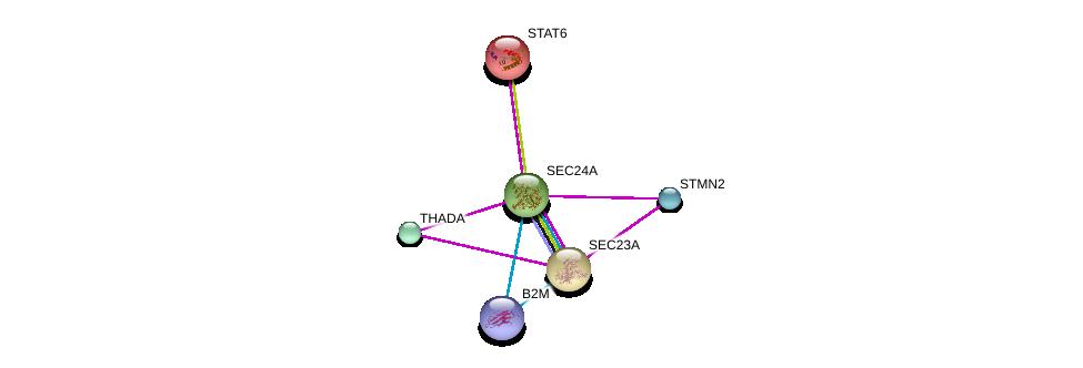 http://string-db.org/version_10/api/image/networkList?limit=0&targetmode=proteins&caller_identity=gene_cards&network_flavor=evidence&identifiers=9606.ENSP00000381823%0d%0a9606.ENSP00000306881%0d%0a9606.ENSP00000385995%0d%0a9606.ENSP00000300134%0d%0a9606.ENSP00000429243%0d%0a9606.ENSP00000452780%0d%0a