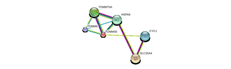 http://string-db.org/version_10/api/image/networkList?limit=0&targetmode=proteins&caller_identity=gene_cards&network_flavor=evidence&identifiers=9606.ENSP00000381856%0d%0a9606.ENSP00000284320%0d%0a9606.ENSP00000281456%0d%0a9606.ENSP00000252487%0d%0a9606.ENSP00000297185%0d%0a9606.ENSP00000317159%0d%0a