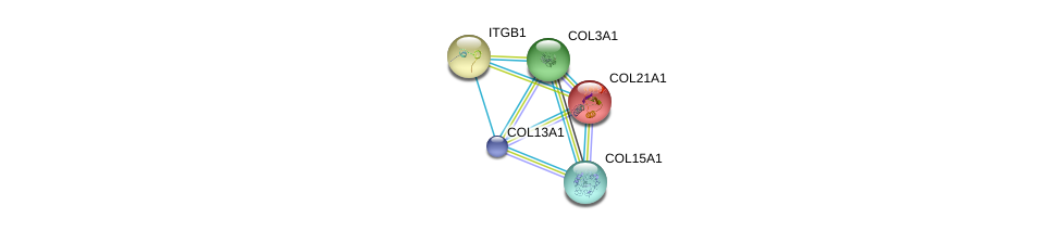 http://string-db.org/version_10/api/image/networkList?limit=0&targetmode=proteins&caller_identity=gene_cards&network_flavor=evidence&identifiers=9606.ENSP00000381949%0d%0a9606.ENSP00000364140%0d%0a9606.ENSP00000304408%0d%0a9606.ENSP00000304408%0d%0a9606.ENSP00000303351%0d%0a9606.ENSP00000244728%0d%0a