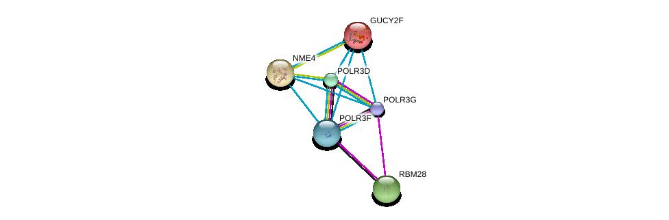 http://string-db.org/version_10/api/image/networkList?limit=0&targetmode=proteins&caller_identity=gene_cards&network_flavor=evidence&identifiers=9606.ENSP00000382058%0d%0a9606.ENSP00000366828%0d%0a9606.ENSP00000223073%0d%0a9606.ENSP00000303088%0d%0a9606.ENSP00000218006%0d%0a9606.ENSP00000219479%0d%0a