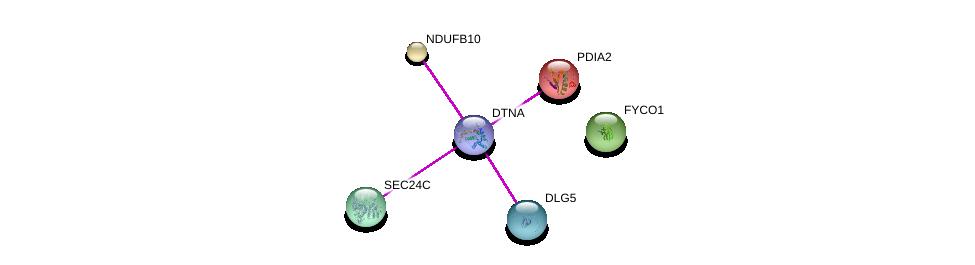 http://string-db.org/version_10/api/image/networkList?limit=0&targetmode=proteins&caller_identity=gene_cards&network_flavor=evidence&identifiers=9606.ENSP00000382064%0d%0a9606.ENSP00000361467%0d%0a9606.ENSP00000268668%0d%0a9606.ENSP00000321845%0d%0a9606.ENSP00000296137%0d%0a9606.ENSP00000219406%0d%0a