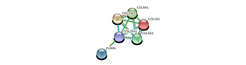 http://string-db.org/version_10/api/image/networkList?limit=0&targetmode=proteins&caller_identity=gene_cards&network_flavor=evidence&identifiers=9606.ENSP00000382083%0d%0a9606.ENSP00000225964%0d%0a9606.ENSP00000243222%0d%0a9606.ENSP00000261037%0d%0a9606.ENSP00000264828%0d%0a9606.ENSP00000268171%0d%0a