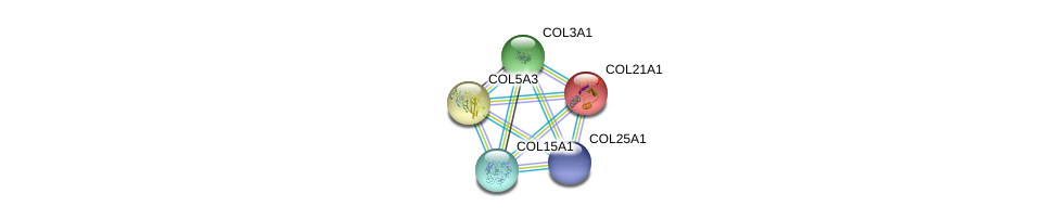 http://string-db.org/version_10/api/image/networkList?limit=0&targetmode=proteins&caller_identity=gene_cards&network_flavor=evidence&identifiers=9606.ENSP00000382083%0d%0a9606.ENSP00000364140%0d%0a9606.ENSP00000304408%0d%0a9606.ENSP00000304408%0d%0a9606.ENSP00000244728%0d%0a9606.ENSP00000264828%0d%0a