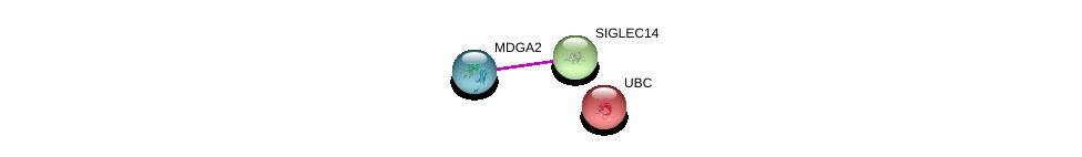 http://string-db.org/version_10/api/image/networkList?limit=0&targetmode=proteins&caller_identity=gene_cards&network_flavor=evidence&identifiers=9606.ENSP00000382178%0d%0a9606.ENSP00000354090%0d%0a9606.ENSP00000344818%0d%0a