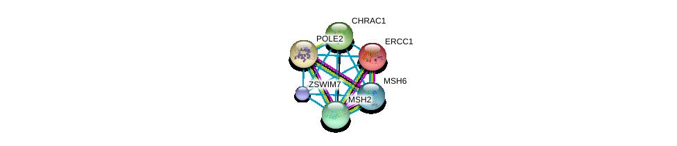 http://string-db.org/version_10/api/image/networkList?limit=0&targetmode=proteins&caller_identity=gene_cards&network_flavor=evidence&identifiers=9606.ENSP00000382218%0d%0a9606.ENSP00000013807%0d%0a9606.ENSP00000216367%0d%0a9606.ENSP00000220913%0d%0a9606.ENSP00000233146%0d%0a9606.ENSP00000234420%0d%0a