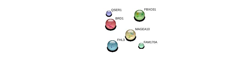http://string-db.org/version_10/api/image/networkList?limit=0&targetmode=proteins&caller_identity=gene_cards&network_flavor=evidence&identifiers=9606.ENSP00000382241%0d%0a9606.ENSP00000216267%0d%0a9606.ENSP00000334285%0d%0a9606.ENSP00000362107%0d%0a9606.ENSP00000310841%0d%0a9606.ENSP00000244096%0d%0a