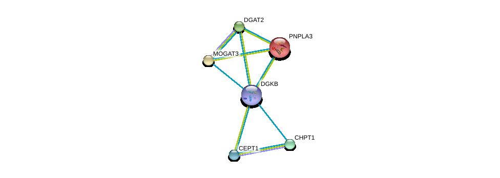 http://string-db.org/version_10/api/image/networkList?limit=0&targetmode=proteins&caller_identity=gene_cards&network_flavor=evidence&identifiers=9606.ENSP00000382260%0d%0a9606.ENSP00000349696%0d%0a9606.ENSP00000216180%0d%0a9606.ENSP00000223114%0d%0a9606.ENSP00000228027%0d%0a9606.ENSP00000229266%0d%0a