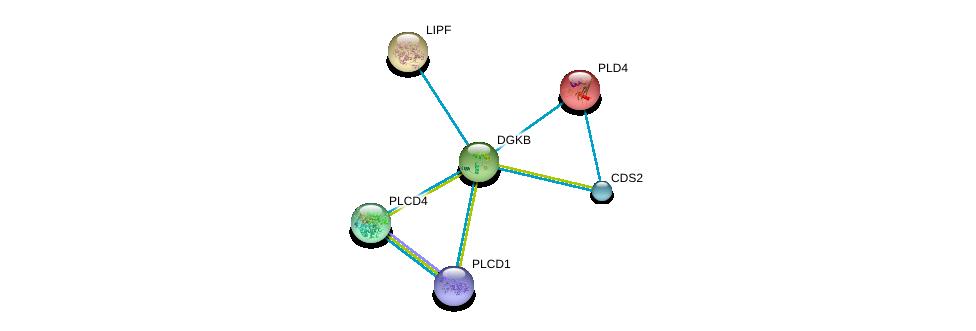 http://string-db.org/version_10/api/image/networkList?limit=0&targetmode=proteins&caller_identity=gene_cards&network_flavor=evidence&identifiers=9606.ENSP00000382260%0d%0a9606.ENSP00000430344%0d%0a9606.ENSP00000419879%0d%0a9606.ENSP00000388631%0d%0a9606.ENSP00000377900%0d%0a9606.ENSP00000376372%0d%0a