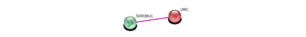 http://string-db.org/version_10/api/image/networkList?limit=0&targetmode=proteins&caller_identity=gene_cards&network_flavor=evidence&identifiers=9606.ENSP00000382327%0d%0a9606.ENSP00000344818%0d%0a
