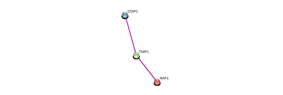 http://string-db.org/version_10/api/image/networkList?limit=0&targetmode=proteins&caller_identity=gene_cards&network_flavor=evidence&identifiers=9606.ENSP00000382508%0d%0a9606.ENSP00000317891%0d%0a9606.ENSP00000274054%0d%0a