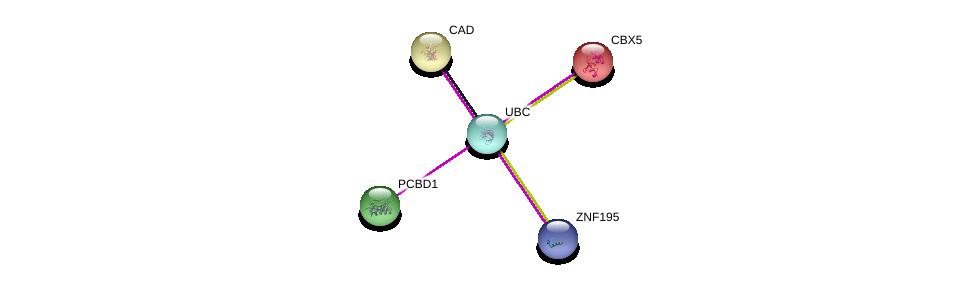 http://string-db.org/version_10/api/image/networkList?limit=0&targetmode=proteins&caller_identity=gene_cards&network_flavor=evidence&identifiers=9606.ENSP00000382511%0d%0a9606.ENSP00000344818%0d%0a9606.ENSP00000299299%0d%0a9606.ENSP00000209875%0d%0a9606.ENSP00000209875%0d%0a9606.ENSP00000264705%0d%0a