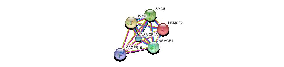 http://string-db.org/version_10/api/image/networkList?limit=0&targetmode=proteins&caller_identity=gene_cards&network_flavor=evidence&identifiers=9606.ENSP00000382867%0d%0a9606.ENSP00000355077%0d%0a9606.ENSP00000354957%0d%0a9606.ENSP00000323439%0d%0a9606.ENSP00000287437%0d%0a9606.ENSP00000358019%0d%0a