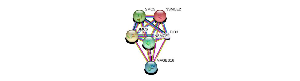 http://string-db.org/version_10/api/image/networkList?limit=0&targetmode=proteins&caller_identity=gene_cards&network_flavor=evidence&identifiers=9606.ENSP00000382867%0d%0a9606.ENSP00000355077%0d%0a9606.ENSP00000354957%0d%0a9606.ENSP00000323439%0d%0a9606.ENSP00000287437%0d%0a9606.ENSP00000435619%0d%0a