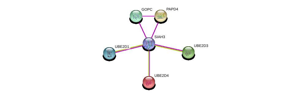 http://string-db.org/version_10/api/image/networkList?limit=0&targetmode=proteins&caller_identity=gene_cards&network_flavor=evidence&identifiers=9606.ENSP00000383256%0d%0a9606.ENSP00000357484%0d%0a9606.ENSP00000296783%0d%0a9606.ENSP00000222402%0d%0a9606.ENSP00000349722%0d%0a9606.ENSP00000363019%0d%0a