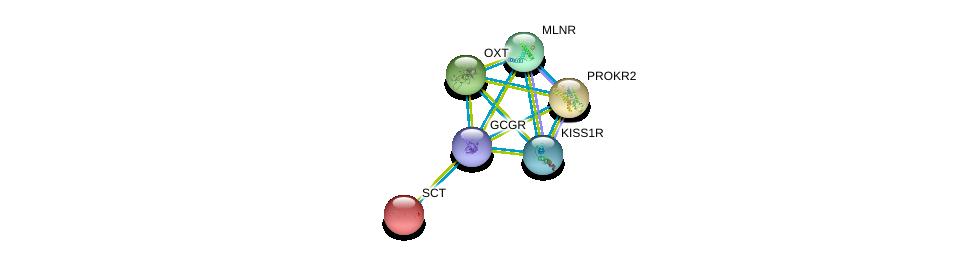 http://string-db.org/version_10/api/image/networkList?limit=0&targetmode=proteins&caller_identity=gene_cards&network_flavor=evidence&identifiers=9606.ENSP00000383558%0d%0a9606.ENSP00000176195%0d%0a9606.ENSP00000217270%0d%0a9606.ENSP00000217386%0d%0a9606.ENSP00000218721%0d%0a9606.ENSP00000234371%0d%0a