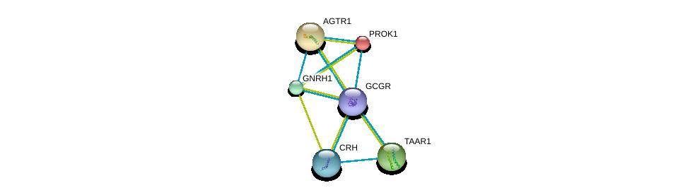 http://string-db.org/version_10/api/image/networkList?limit=0&targetmode=proteins&caller_identity=gene_cards&network_flavor=evidence&identifiers=9606.ENSP00000383558%0d%0a9606.ENSP00000273430%0d%0a9606.ENSP00000271331%0d%0a9606.ENSP00000275216%0d%0a9606.ENSP00000276414%0d%0a9606.ENSP00000276571%0d%0a