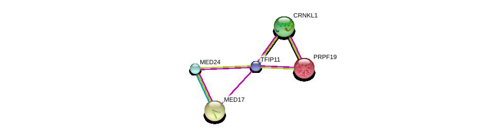 http://string-db.org/version_10/api/image/networkList?limit=0&targetmode=proteins&caller_identity=gene_cards&network_flavor=evidence&identifiers=9606.ENSP00000383892%0d%0a9606.ENSP00000251871%0d%0a9606.ENSP00000377686%0d%0a9606.ENSP00000377686%0d%0a9606.ENSP00000227524%0d%0a9606.ENSP00000366557%0d%0a