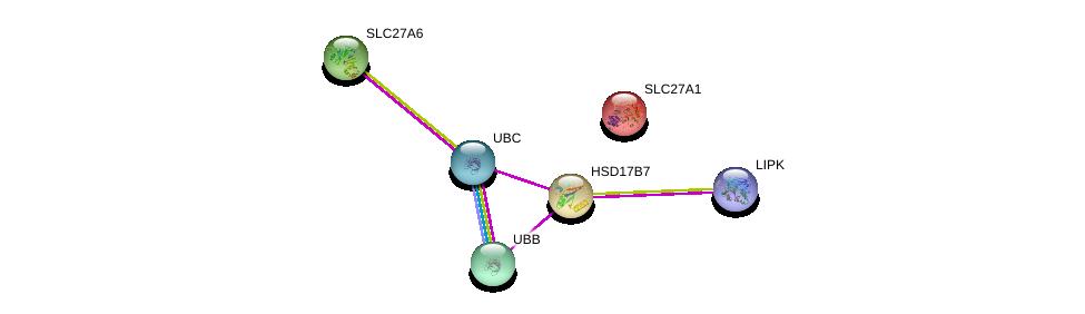 http://string-db.org/version_10/api/image/networkList?limit=0&targetmode=proteins&caller_identity=gene_cards&network_flavor=evidence&identifiers=9606.ENSP00000383900%0d%0a9606.ENSP00000254521%0d%0a9606.ENSP00000304697%0d%0a9606.ENSP00000344818%0d%0a9606.ENSP00000252595%0d%0a9606.ENSP00000262462%0d%0a