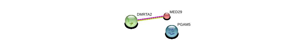 http://string-db.org/version_10/api/image/networkList?limit=0&targetmode=proteins&caller_identity=gene_cards&network_flavor=evidence&identifiers=9606.ENSP00000383909%0d%0a9606.ENSP00000314343%0d%0a9606.ENSP00000438465%0d%0a