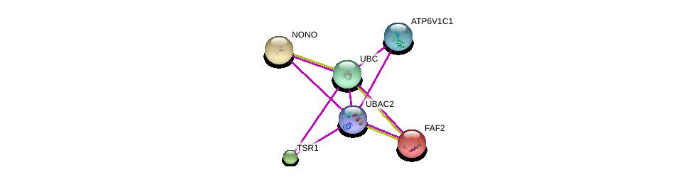 http://string-db.org/version_10/api/image/networkList?limit=0&targetmode=proteins&caller_identity=gene_cards&network_flavor=evidence&identifiers=9606.ENSP00000383911%0d%0a9606.ENSP00000344818%0d%0a9606.ENSP00000261942%0d%0a9606.ENSP00000301364%0d%0a9606.ENSP00000276079%0d%0a9606.ENSP00000379203%0d%0a