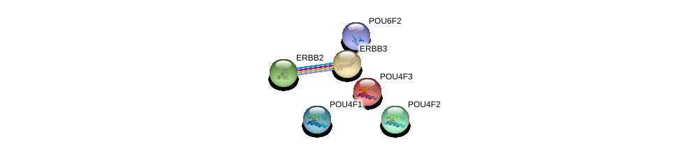 http://string-db.org/version_10/api/image/networkList?limit=0&targetmode=proteins&caller_identity=gene_cards&network_flavor=evidence&identifiers=9606.ENSP00000384004%0d%0a9606.ENSP00000281321%0d%0a9606.ENSP00000230732%0d%0a9606.ENSP00000366413%0d%0a9606.ENSP00000269571%0d%0a9606.ENSP00000267101%0d%0a