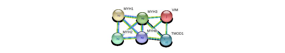 http://string-db.org/version_10/api/image/networkList?limit=0&targetmode=proteins&caller_identity=gene_cards&network_flavor=evidence&identifiers=9606.ENSP00000384330%0d%0a9606.ENSP00000224237%0d%0a9606.ENSP00000226207%0d%0a9606.ENSP00000226209%0d%0a9606.ENSP00000245503%0d%0a9606.ENSP00000259365%0d%0a