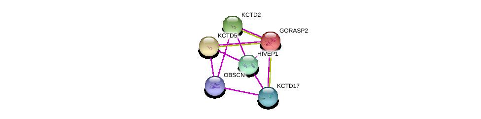 http://string-db.org/version_10/api/image/networkList?limit=0&targetmode=proteins&caller_identity=gene_cards&network_flavor=evidence&identifiers=9606.ENSP00000384391%0d%0a9606.ENSP00000455507%0d%0a9606.ENSP00000368698%0d%0a9606.ENSP00000301738%0d%0a9606.ENSP00000312814%0d%0a9606.ENSP00000234160%0d%0a