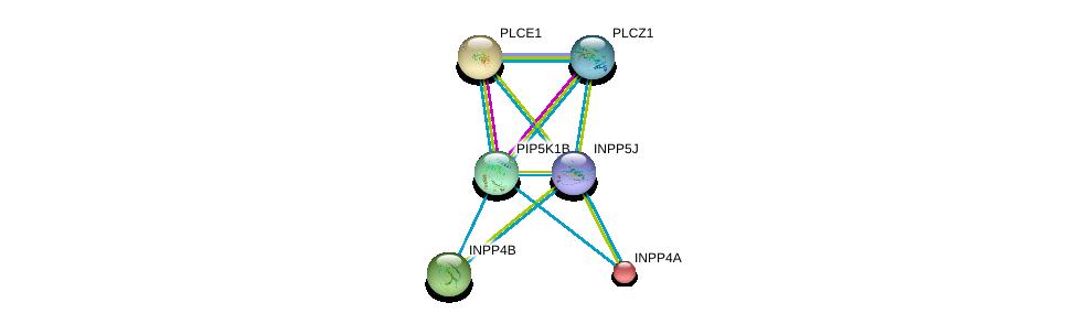 http://string-db.org/version_10/api/image/networkList?limit=0&targetmode=proteins&caller_identity=gene_cards&network_flavor=evidence&identifiers=9606.ENSP00000384534%0d%0a9606.ENSP00000074304%0d%0a9606.ENSP00000260766%0d%0a9606.ENSP00000262992%0d%0a9606.ENSP00000265382%0d%0a9606.ENSP00000266505%0d%0a