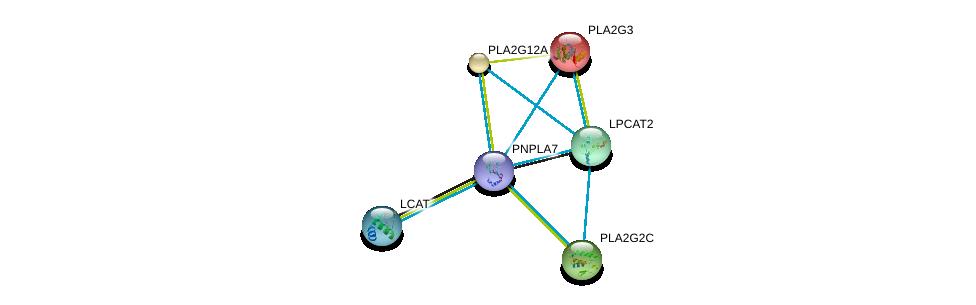 http://string-db.org/version_10/api/image/networkList?limit=0&targetmode=proteins&caller_identity=gene_cards&network_flavor=evidence&identifiers=9606.ENSP00000384610%0d%0a9606.ENSP00000215885%0d%0a9606.ENSP00000243501%0d%0a9606.ENSP00000247992%0d%0a9606.ENSP00000262134%0d%0a9606.ENSP00000264005%0d%0a