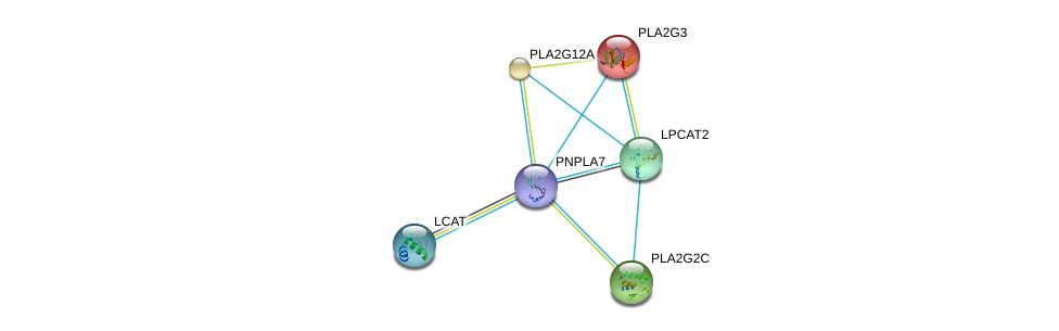 http://string-db.org/version_10/api/image/networkList?limit=0&targetmode=proteins&caller_identity=gene_cards&network_flavor=evidence&identifiers=9606.ENSP00000384610%0d%0a9606.ENSP00000215885%0d%0a9606.ENSP00000247992%0d%0a9606.ENSP00000264005%0d%0a9606.ENSP00000243501%0d%0a9606.ENSP00000262134%0d%0a