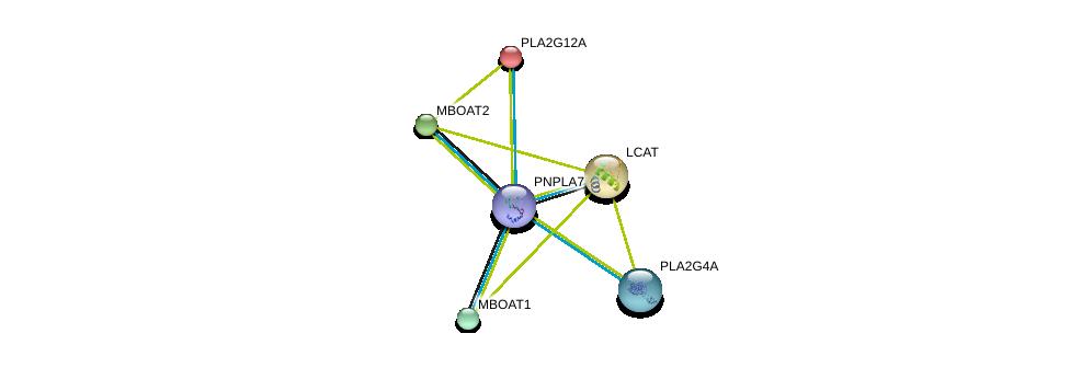 http://string-db.org/version_10/api/image/networkList?limit=0&targetmode=proteins&caller_identity=gene_cards&network_flavor=evidence&identifiers=9606.ENSP00000384610%0d%0a9606.ENSP00000243501%0d%0a9606.ENSP00000264005%0d%0a9606.ENSP00000356436%0d%0a9606.ENSP00000324944%0d%0a9606.ENSP00000302177%0d%0a