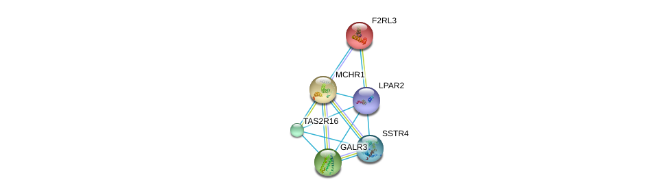 http://string-db.org/version_10/api/image/networkList?limit=0&targetmode=proteins&caller_identity=gene_cards&network_flavor=evidence&identifiers=9606.ENSP00000384665%0d%0a9606.ENSP00000249041%0d%0a9606.ENSP00000249284%0d%0a9606.ENSP00000249016%0d%0a9606.ENSP00000255008%0d%0a9606.ENSP00000248076%0d%0a