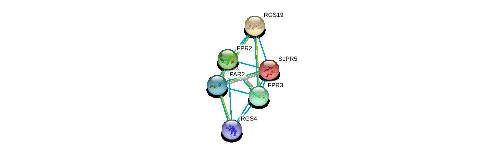 http://string-db.org/version_10/api/image/networkList?limit=0&targetmode=proteins&caller_identity=gene_cards&network_flavor=evidence&identifiers=9606.ENSP00000384665%0d%0a9606.ENSP00000340191%0d%0a9606.ENSP00000341821%0d%0a9606.ENSP00000328472%0d%0a9606.ENSP00000333194%0d%0a9606.ENSP00000397181%0d%0a