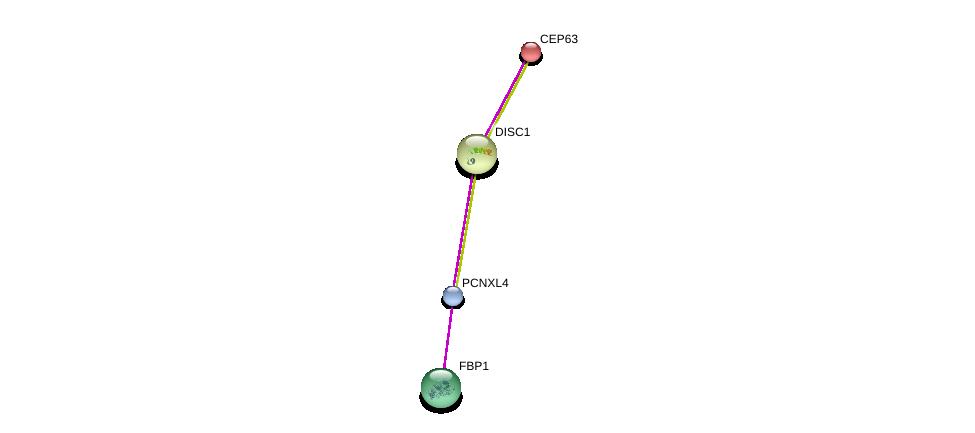 http://string-db.org/version_10/api/image/networkList?limit=0&targetmode=proteins&caller_identity=gene_cards&network_flavor=evidence&identifiers=9606.ENSP00000384801%0d%0a9606.ENSP00000364475%0d%0a9606.ENSP00000355593%0d%0a9606.ENSP00000336524%0d%0a